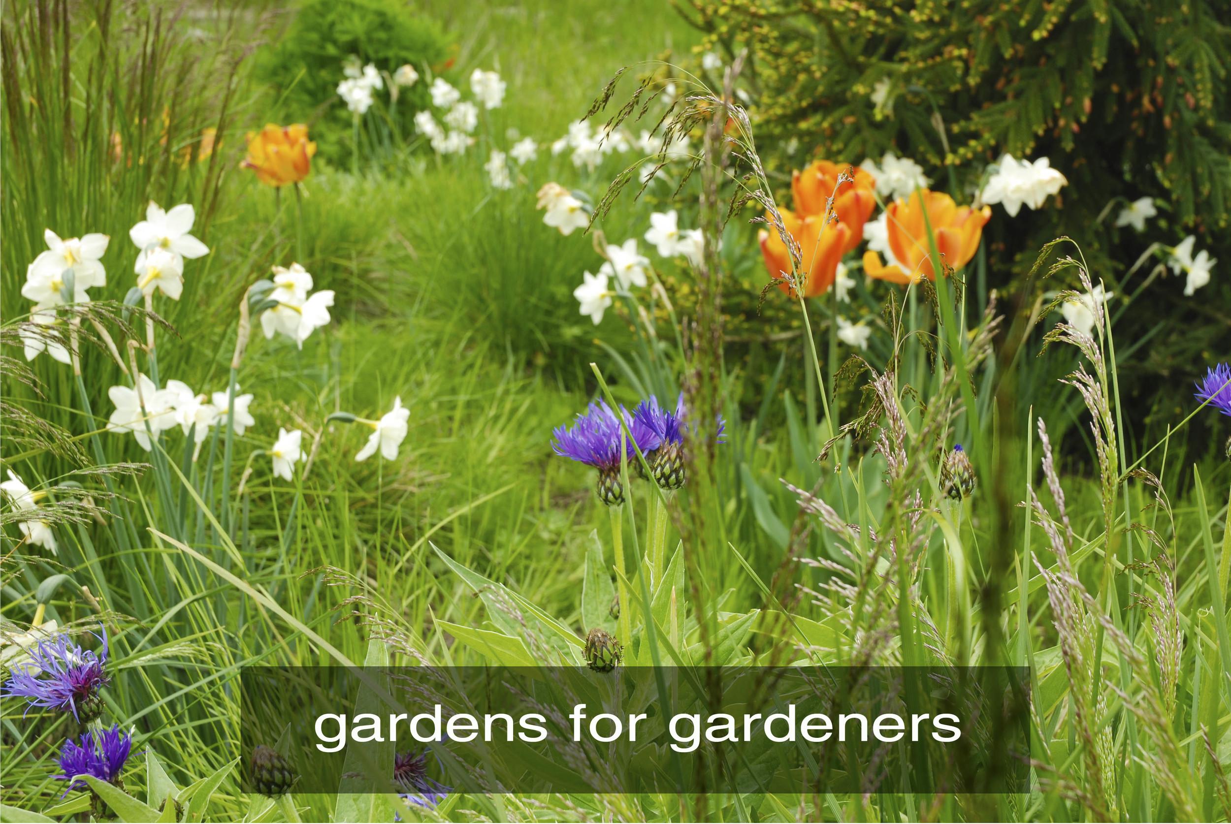 gardeners_3.jpg
