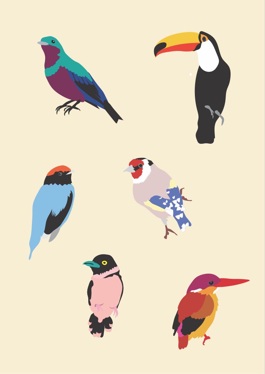 JUSTINEDUCROSxMARCS_PRINT_TROPIC_BIRDS.png