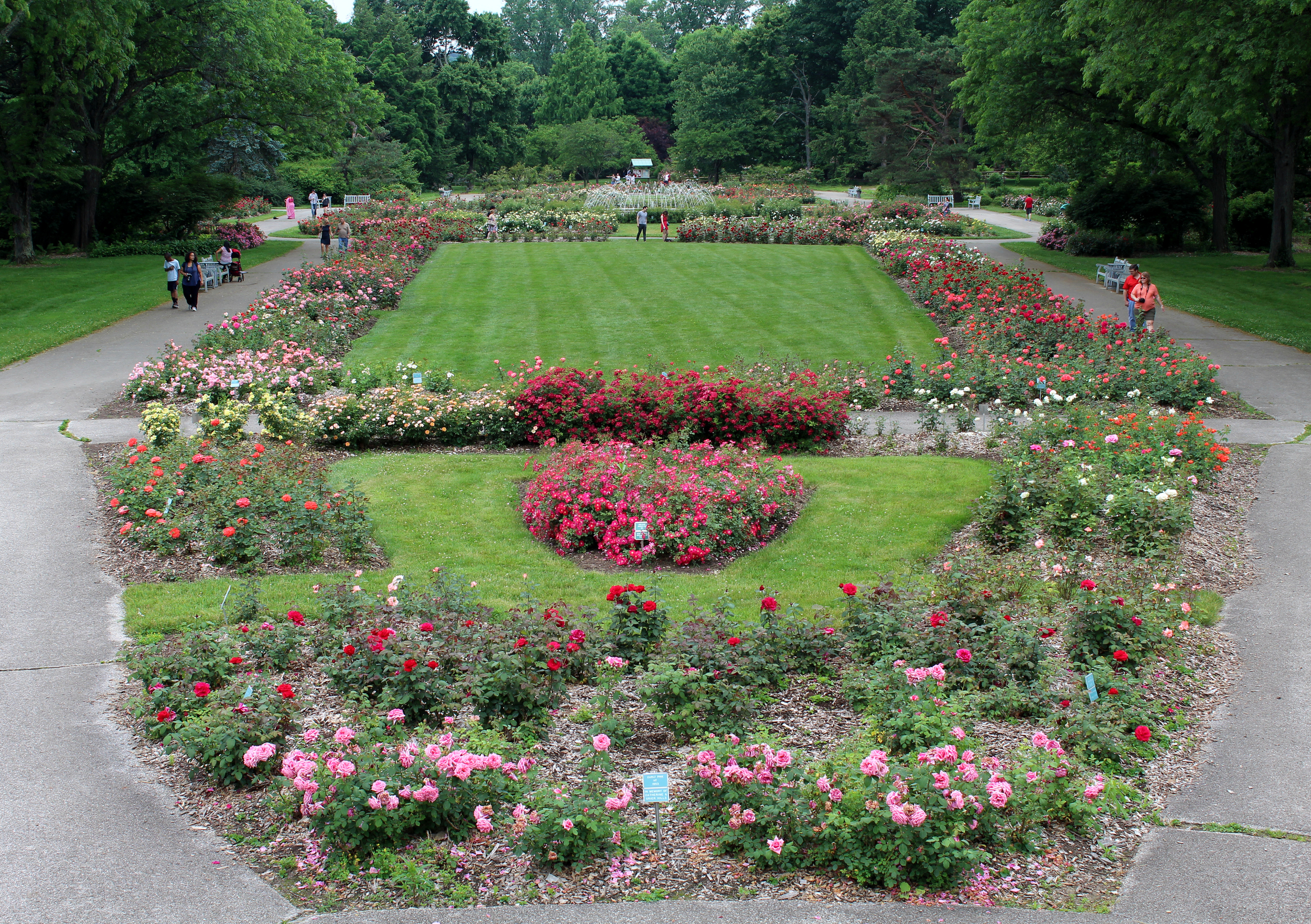 Overlooking the Park of Roses