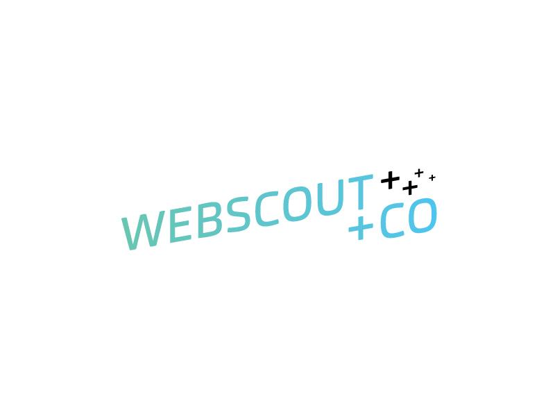 Webscout_800x600_1.jpg