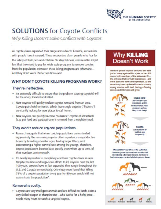 solutions for coyote conflict.JPG