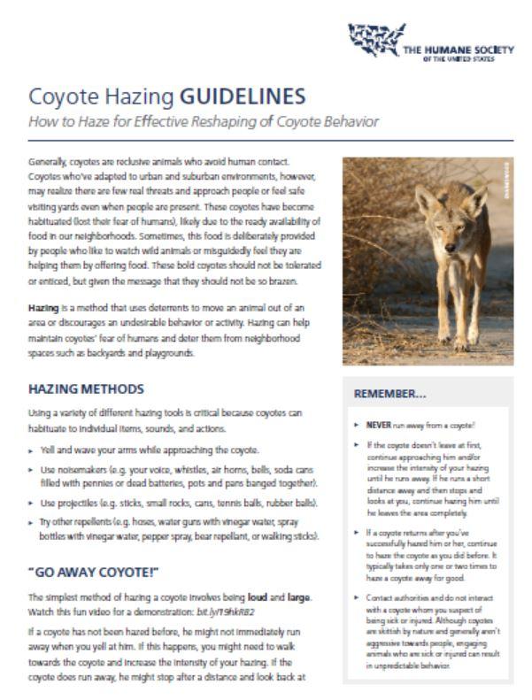 coyote hazing guidlines.JPG