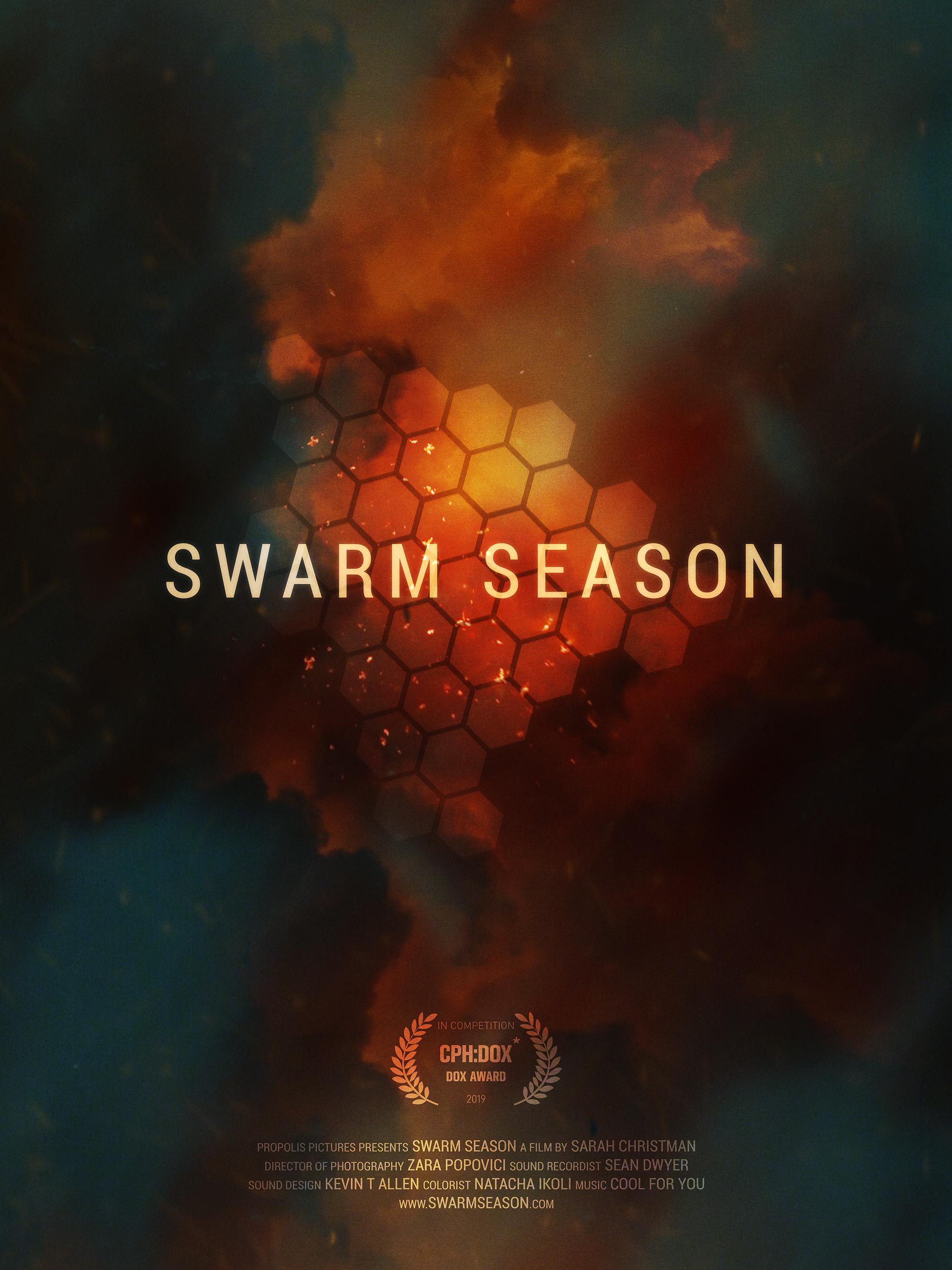 swarm_season_poster_thumb.jpg