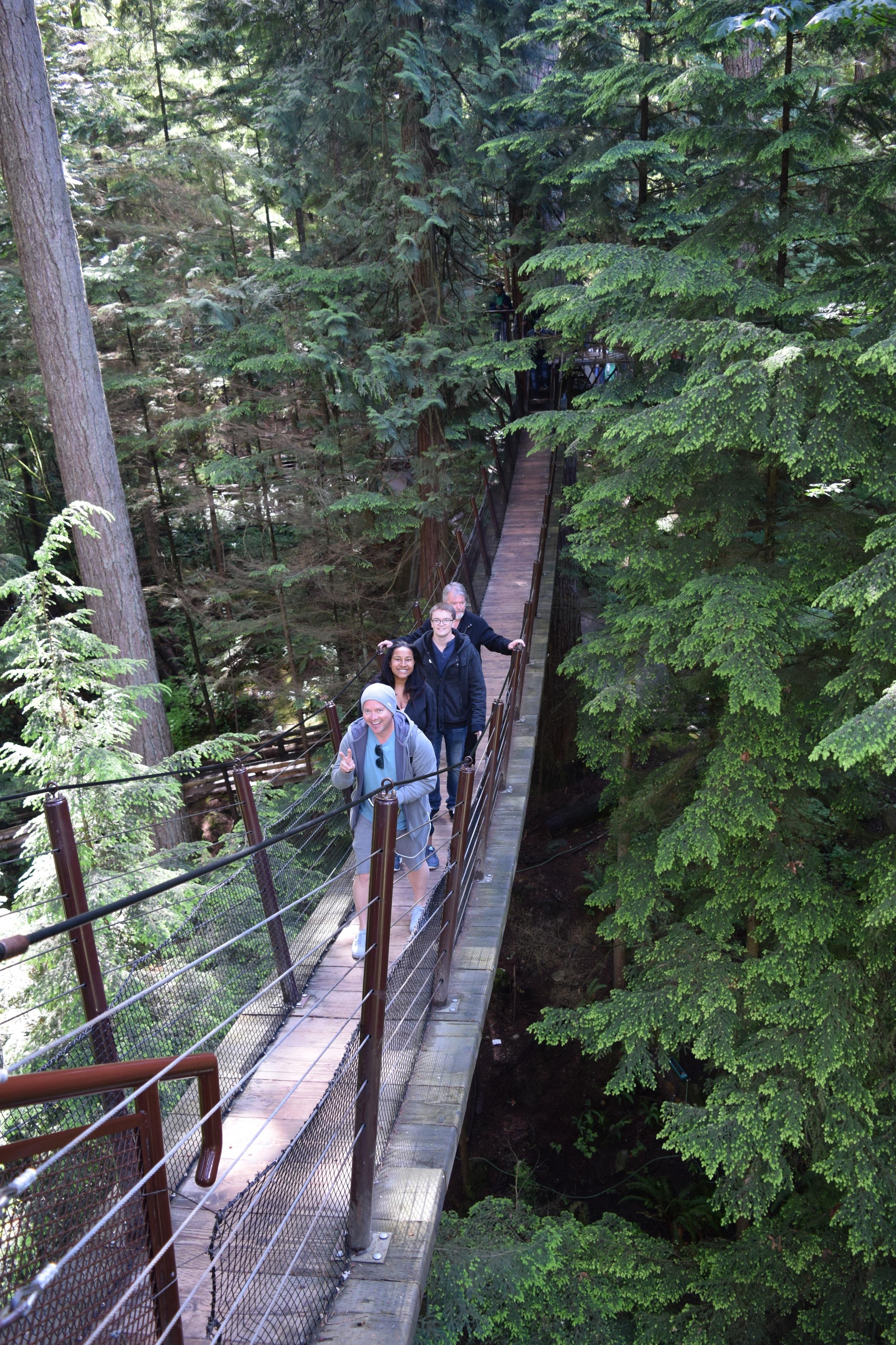 Capilano Suspension Bridge Tree Walkway 2.jpg