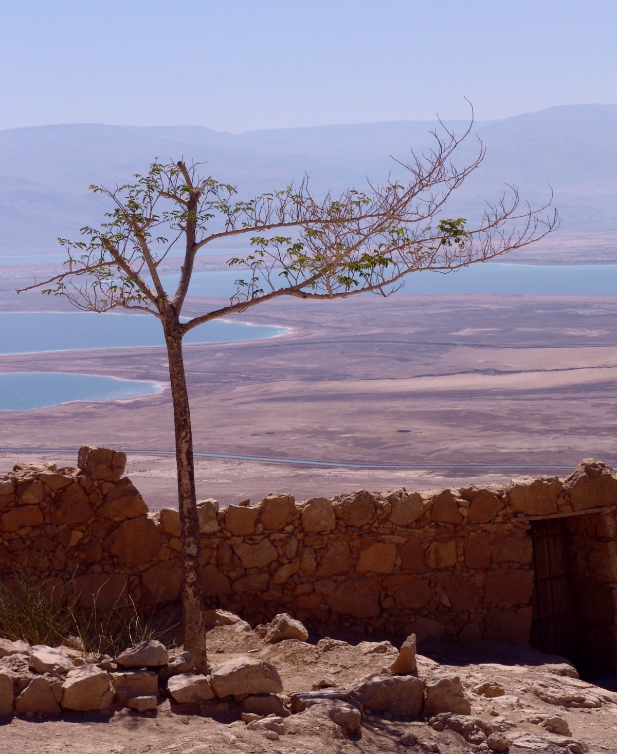 dead_sea_israel_landscape_salt_travel_east_mineral_coast-1011297.jpg!d.jpeg