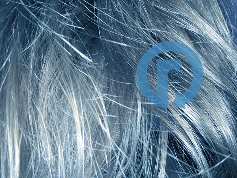 reset-hair-analasys.jpg.jpg