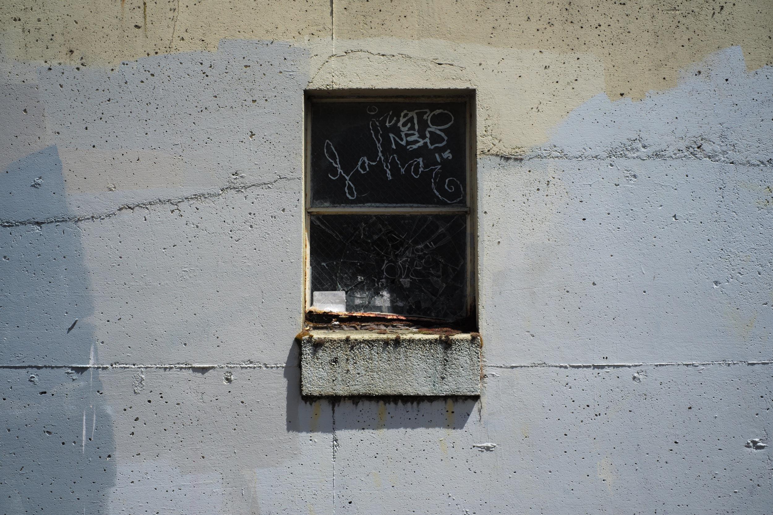 Window, Olympia, WA 2016