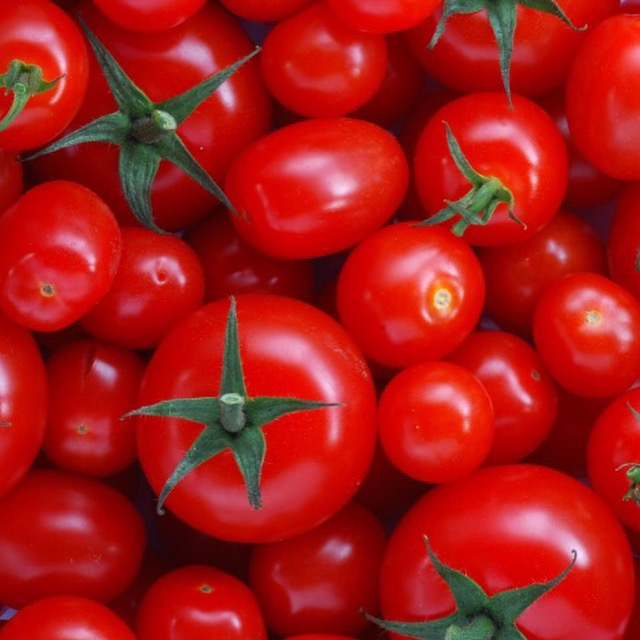 Tomato seed oil rejuvenates aging skin properties, restores skin antioxidant defenses, & quenches.