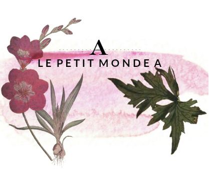 New in Beauty: Back to Basics Skincare  Le Petit Mondea  August 2017