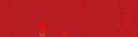 nynog_netflix_logo.png