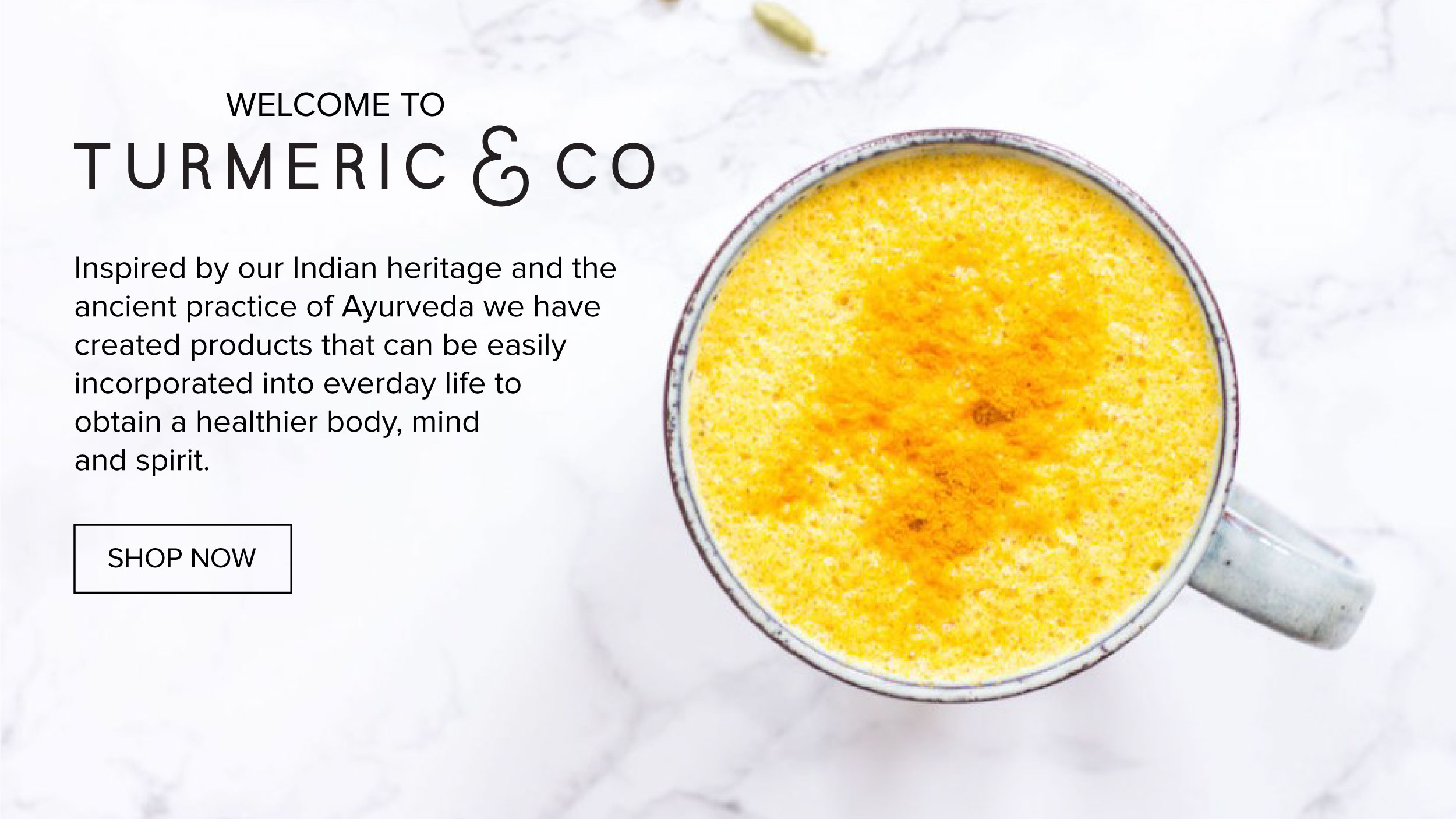 Turmeric-and-Co-Banner.jpg
