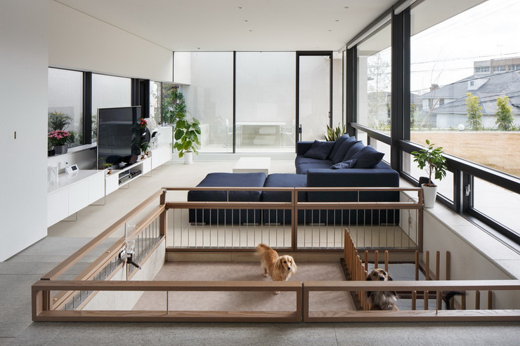 Pet-Friendly Interiors (1).jpg