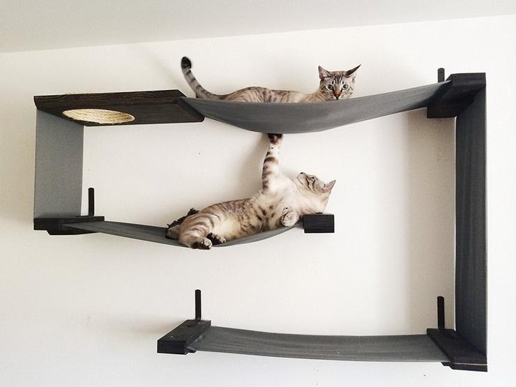 Pet-Friendly Interiors (7).jpg