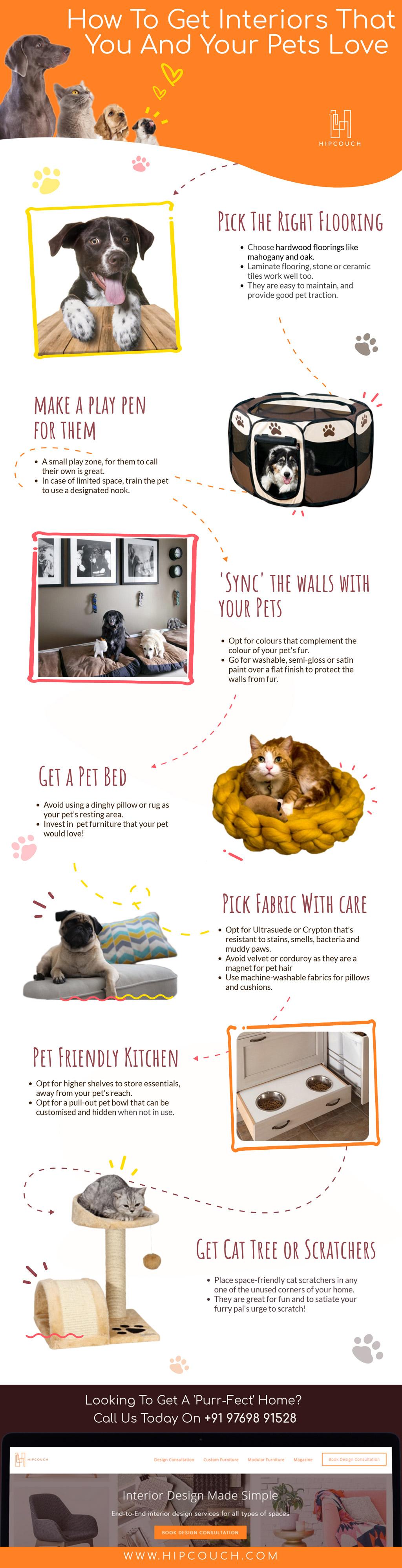 interiors-designs-for-pet-lovers.jpg