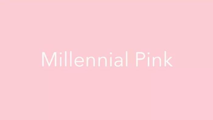 millenial pink for 2018.jpg