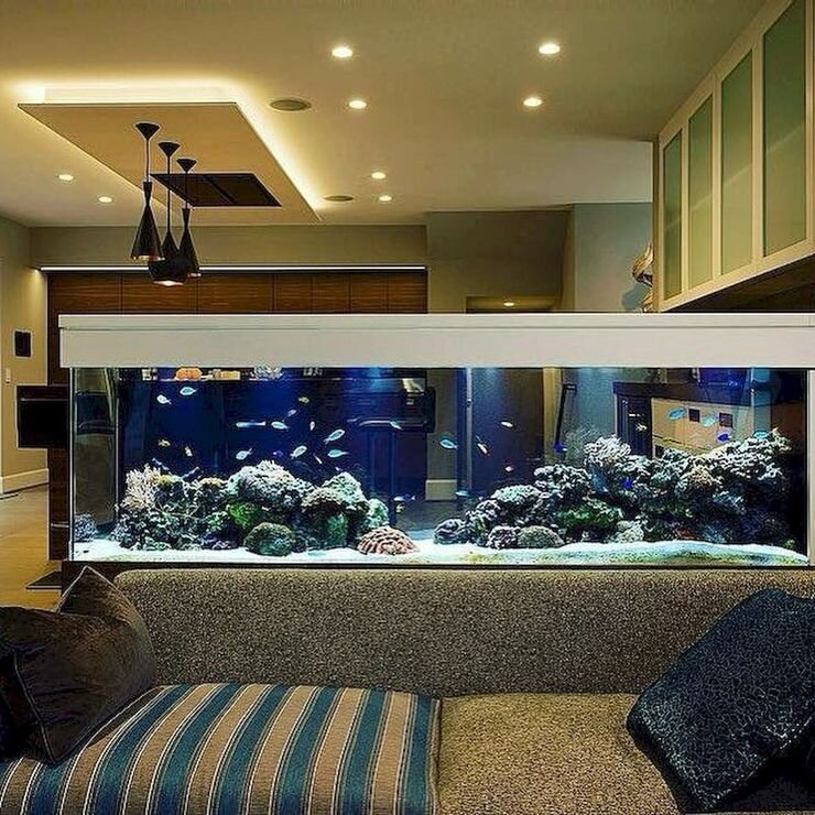 Are You An Aquarist Here Are Some Ways To Incorporate An Aquarium In Your Home Design Hipcouch Complete Interiors Furniture