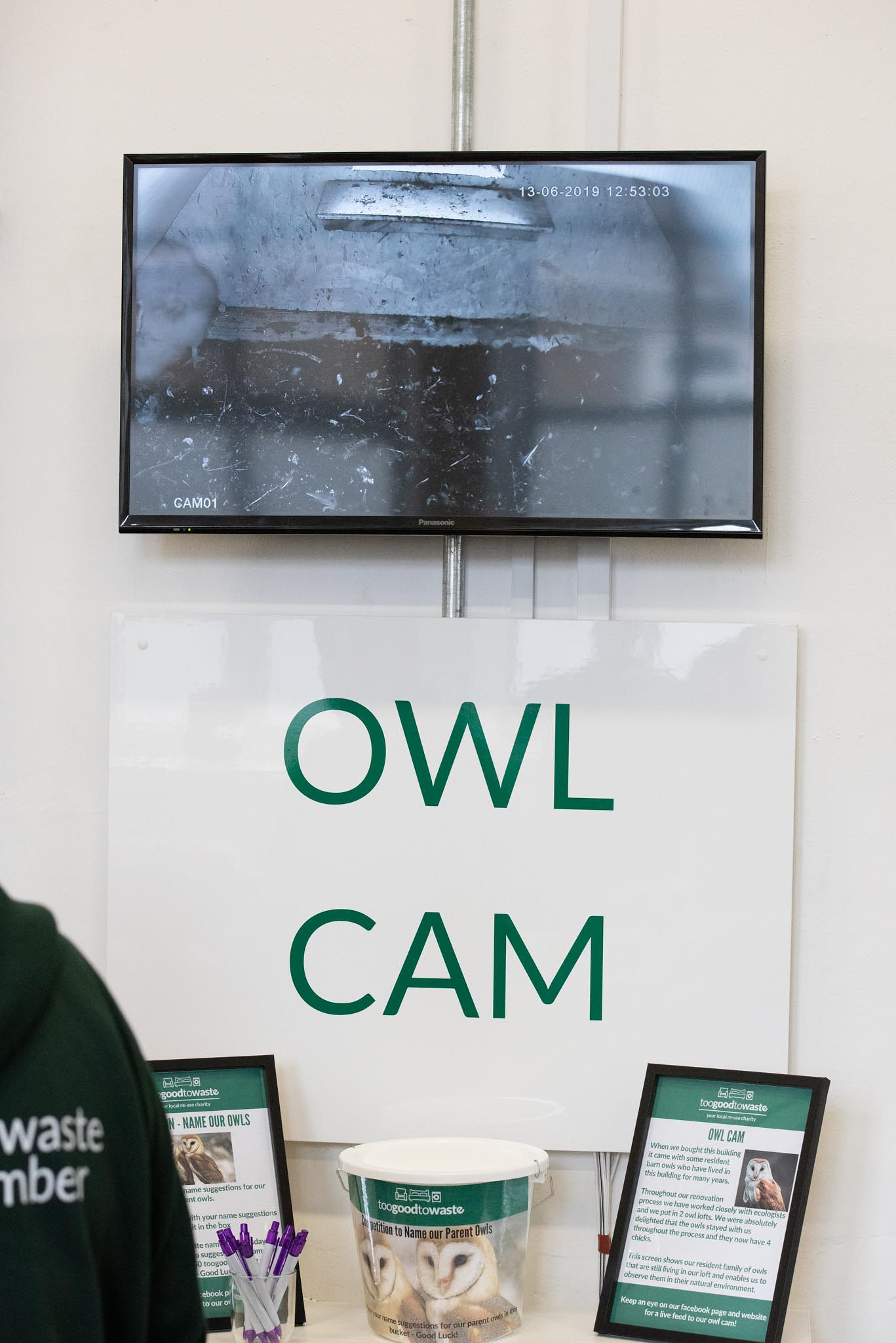 Owl cam.jpg