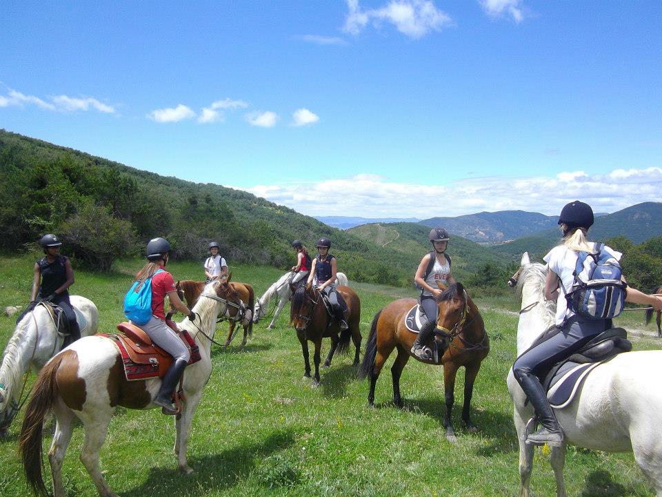 campamentos equitacion 2014.jpg