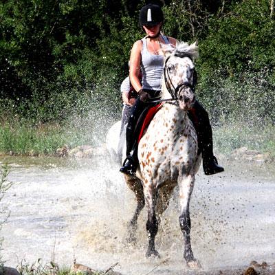 campamentos de verano caballos