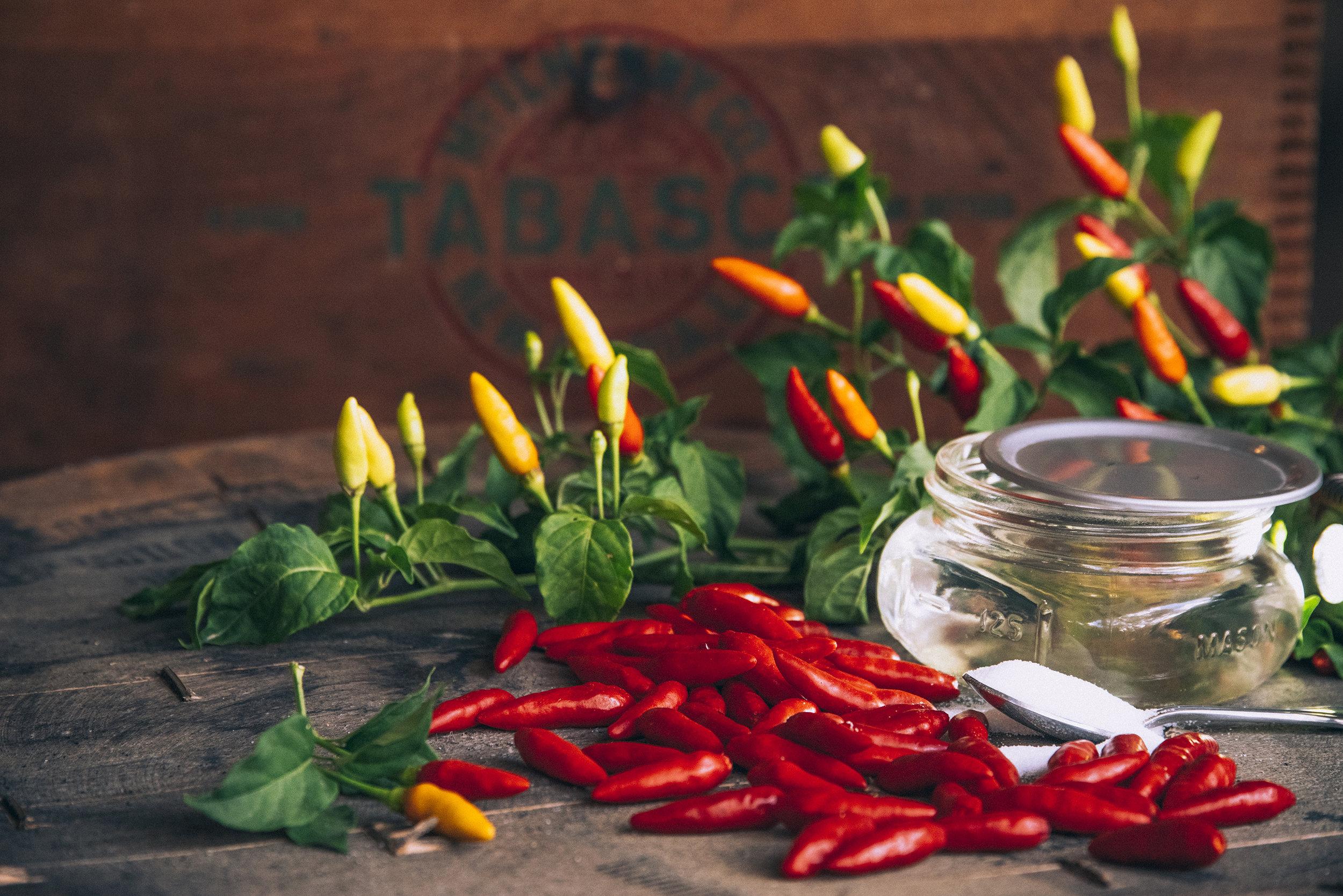 TABASCO_Ingredients_00004.jpg