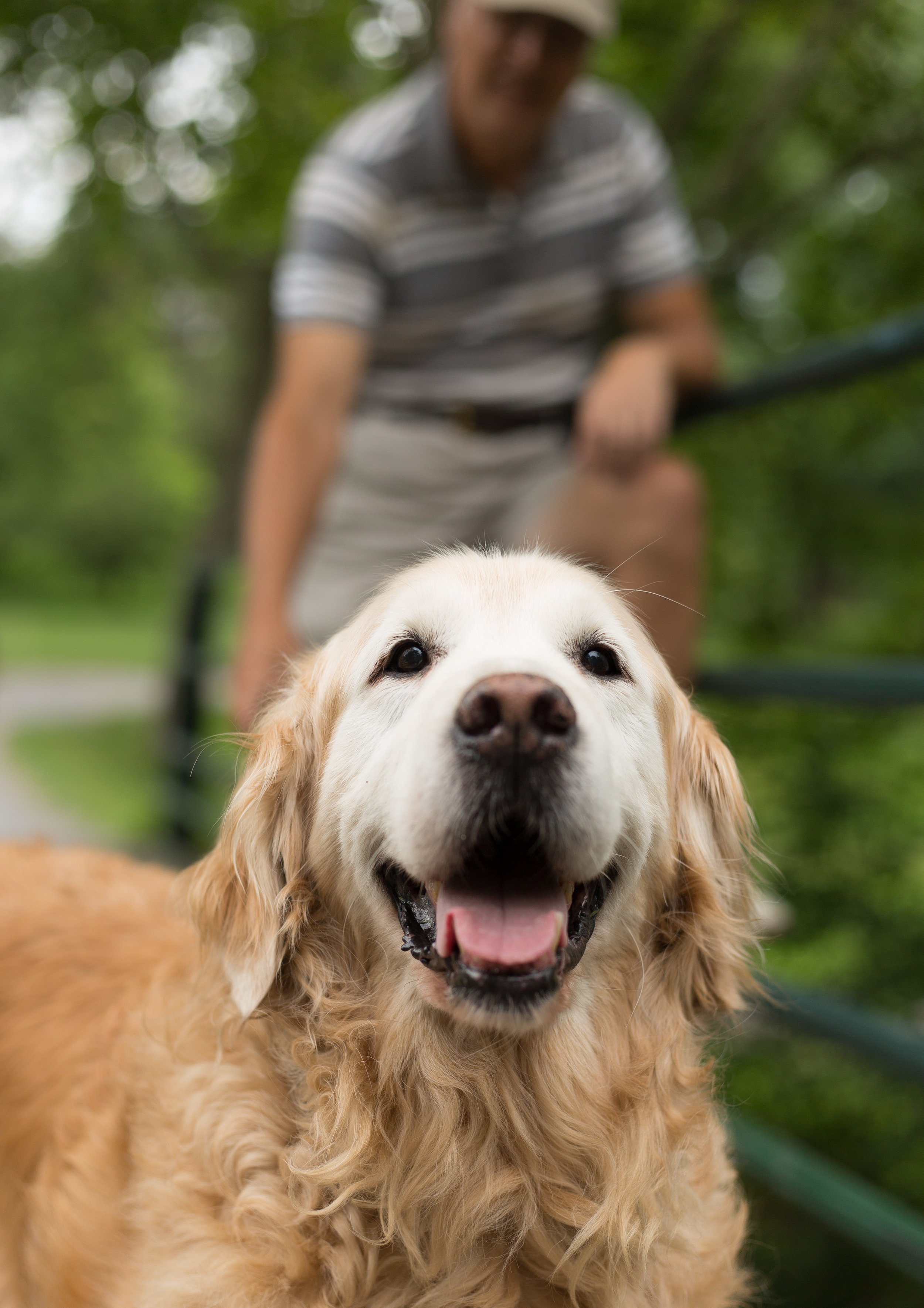 Lucky Dogs Mini Sessions-6.jpg