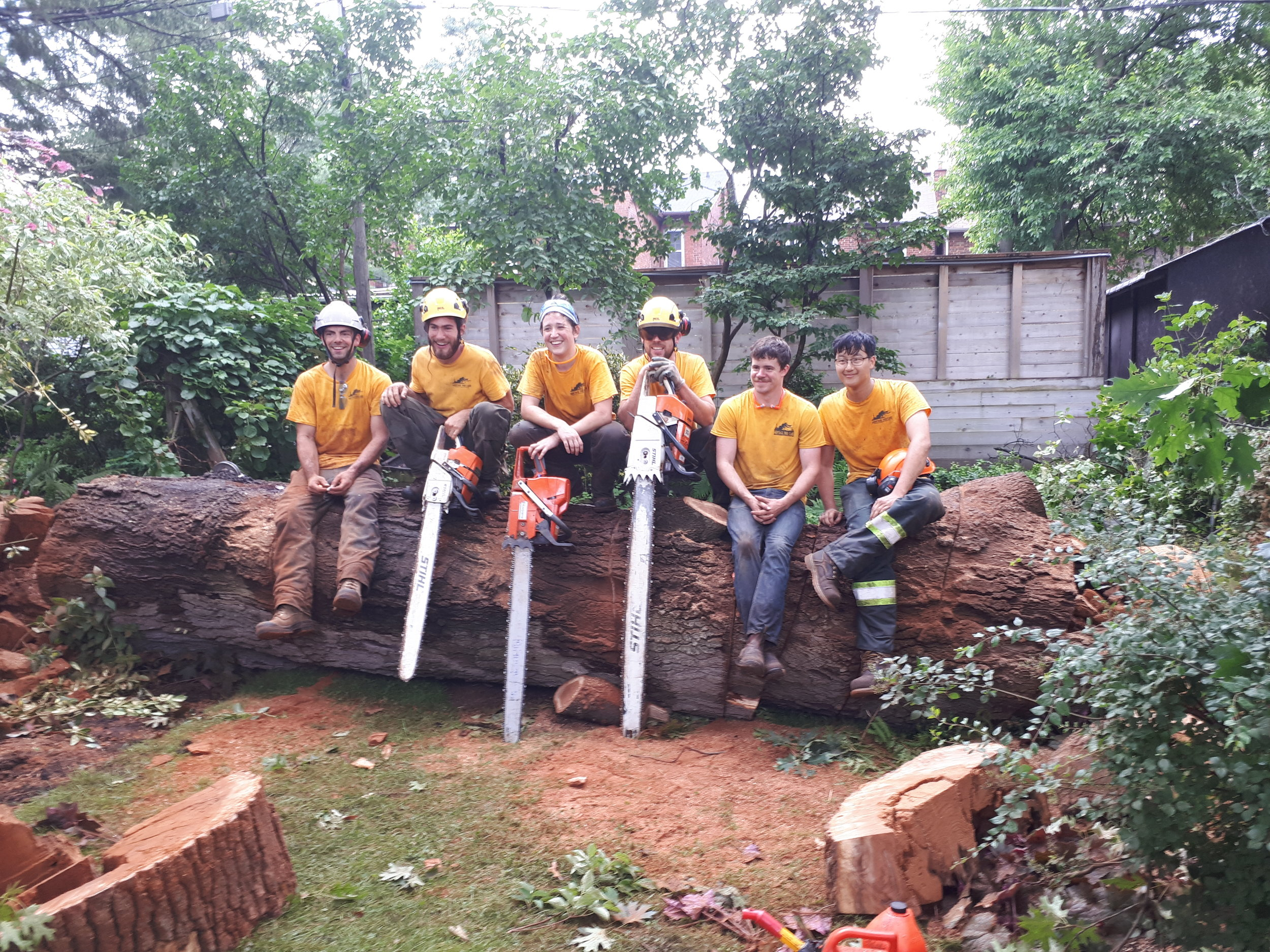 Heritage Tree Care Inc. arborists, climbers and groundies, all the crew together