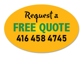 Request a free quote from a professional arborist