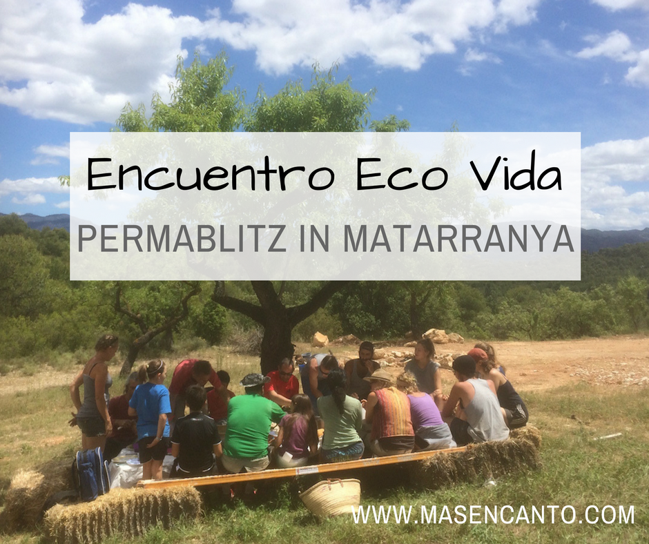 Encuentro Eco Vida - monthly get-togethers with off-grid adventurers in Matarranya, Aragon