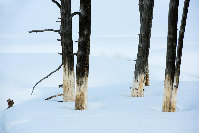 Frozen-022.jpg