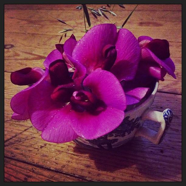 3253ed3232042120-Sweet_pea_floral_arrangement.jpg