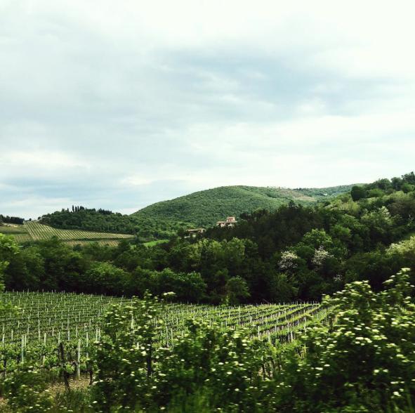 tuscany-italy-castelvecchi-chianti-hotel-vinyards.png