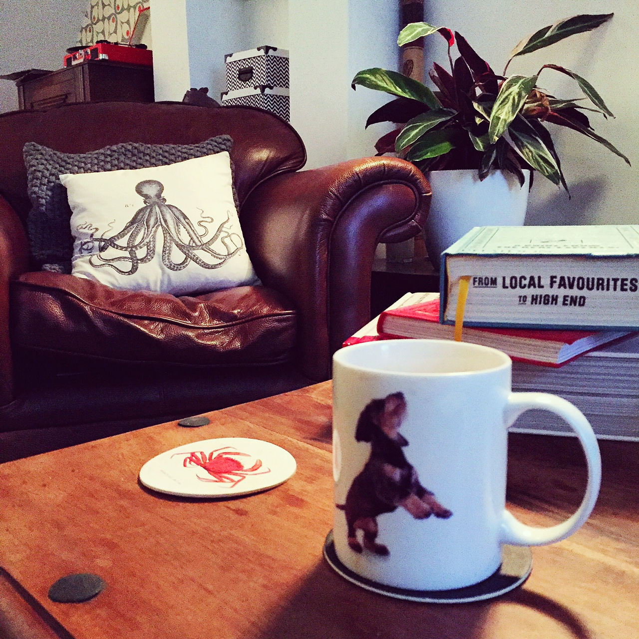 home_hm_retro_octopus_cushion_dachshund_mug.JPG