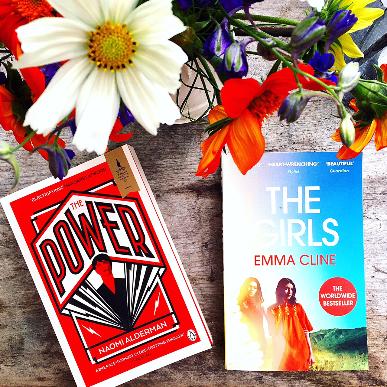 book-covers-books-the-girls-the-power-travel.JPG