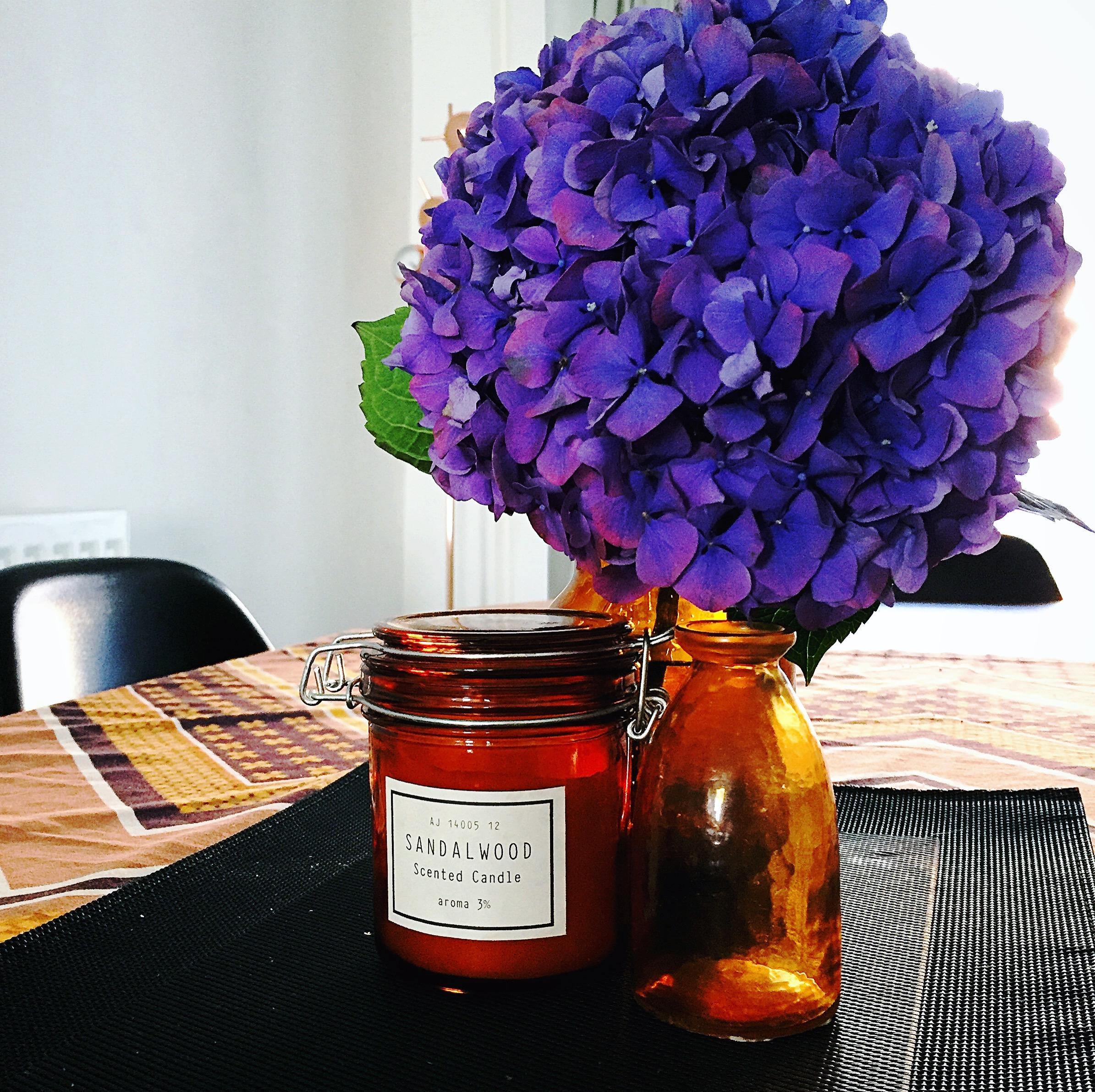 the-flower-man-local-flora-delphinium-hm-home-blog.JPG