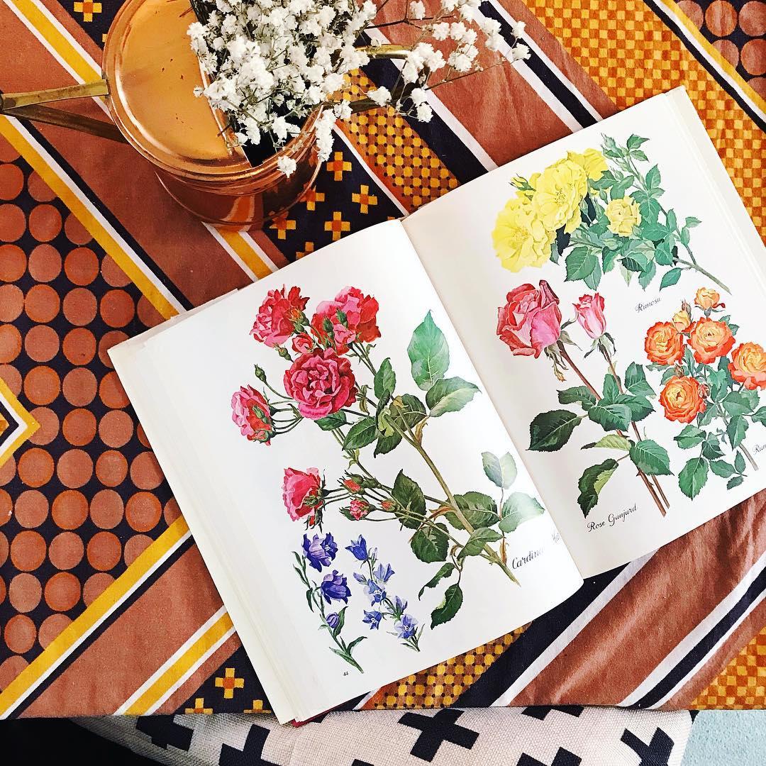 roses-book-vintage-flora-floral-book.jpg