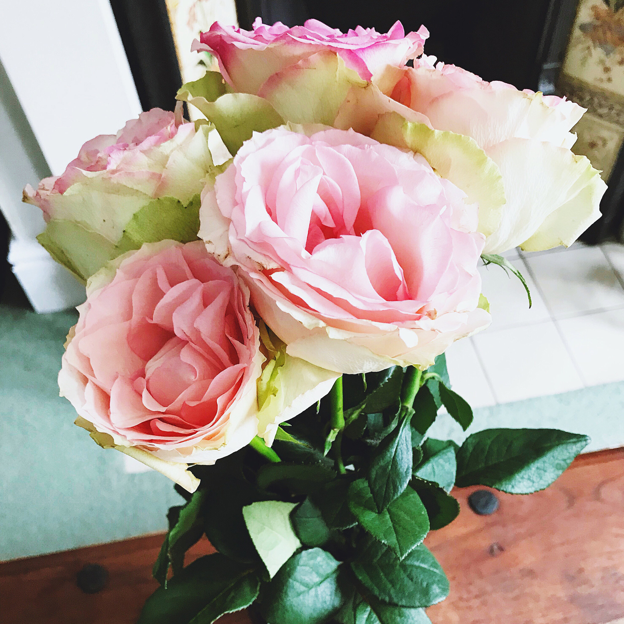 pink-roses-flora.jpg