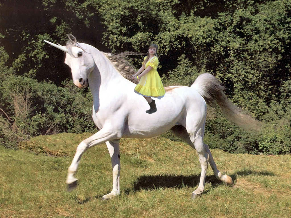 Katy on a unicorn.jpg