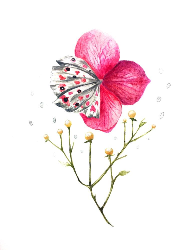 flowerfly_front.jpg