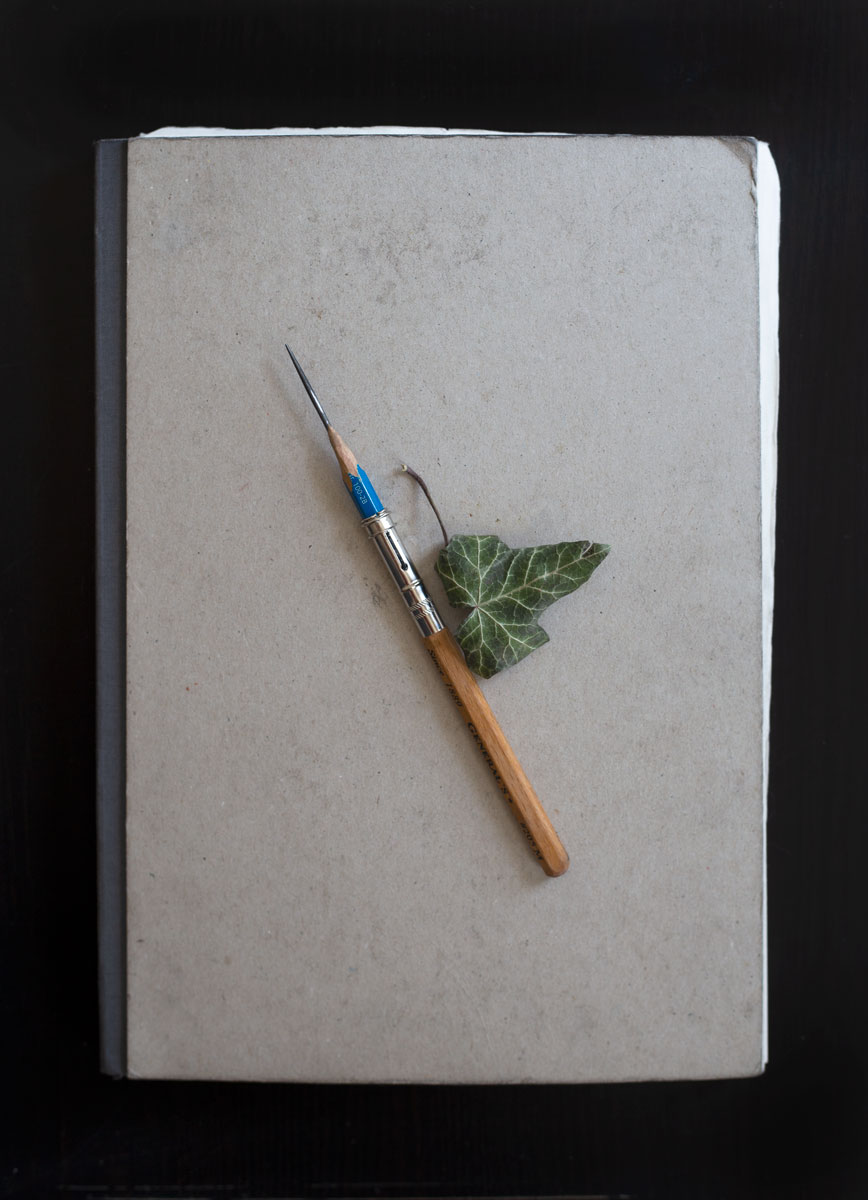 My sketchbook is a sacred place where I let my mind free and explore the depths of my imagination. It is the one place where I truly create without expectation. It's pages are full of idea children - some of which failed miserably and others that flourished and grew into successful completed works.