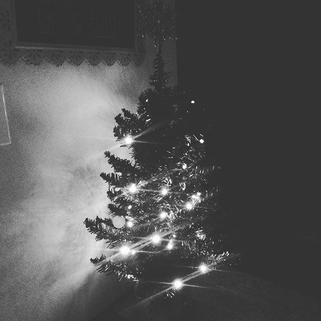 Holiday Glow. Easy trees-y beautiful 🎄