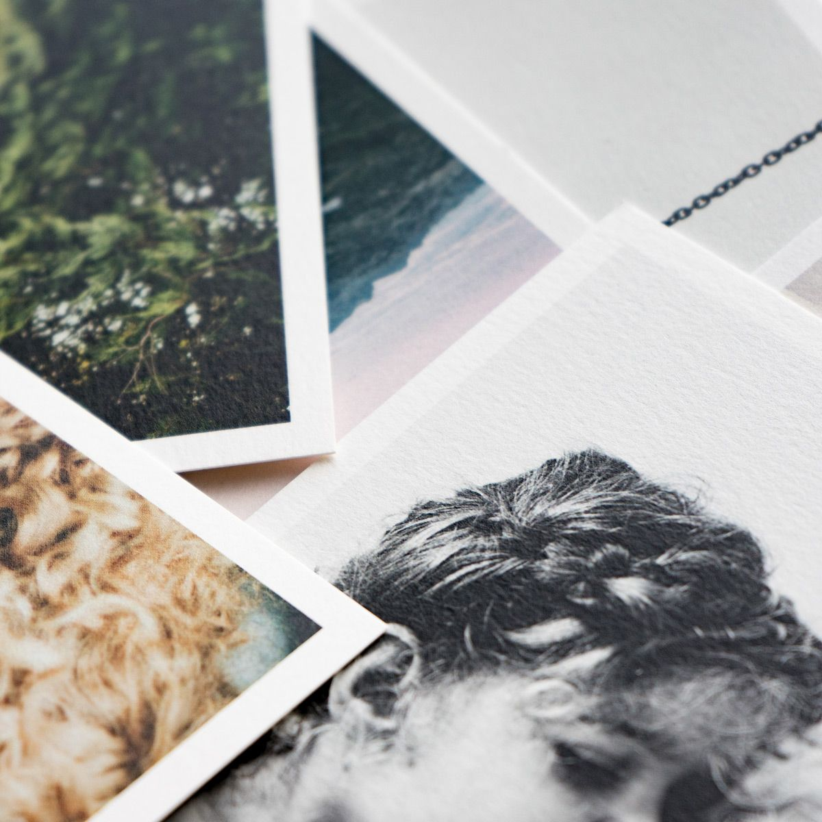 everyday-print-set-multi-size-paper-detail-main05_2x_1.jpg