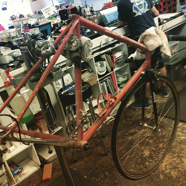 A Premium Service at LMV will resurrect the dirtiest bike and make it road ready once again. Drop your bike off while the snow is flying!#loveableliveablelongmont #longmont #bikelife #bikes #bianchi #bianchiusa #bianchistore #biketunes