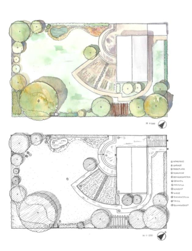 Garden Plan  hand drawn and edited in Photoshop.
