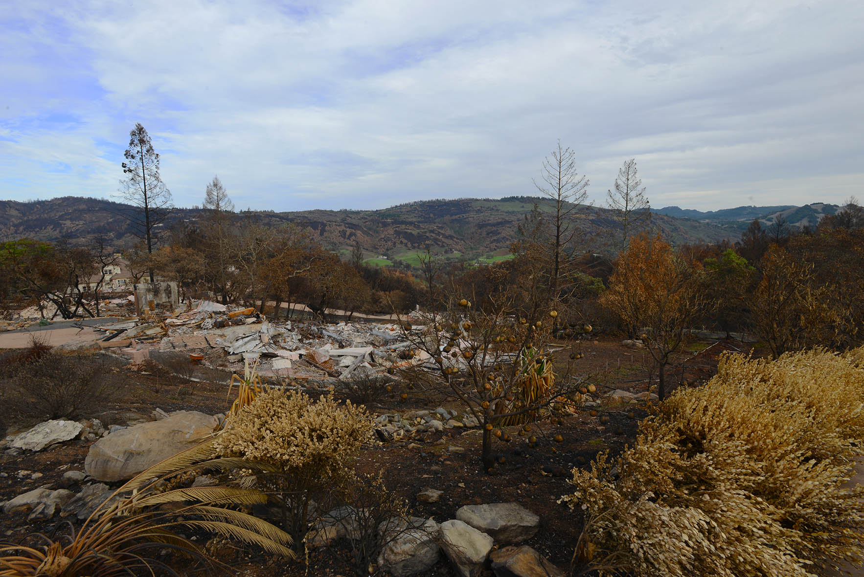 FIRE November 25- 2017-7LO RES.jpg