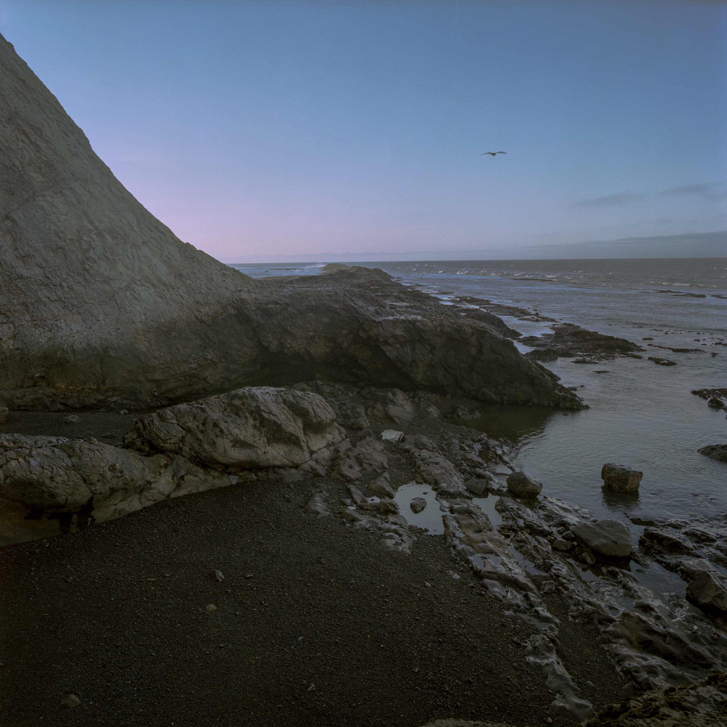 Bolinas Dark Morning Cove LO RES .jpg