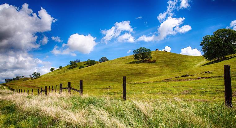 california-valley-green.jpg