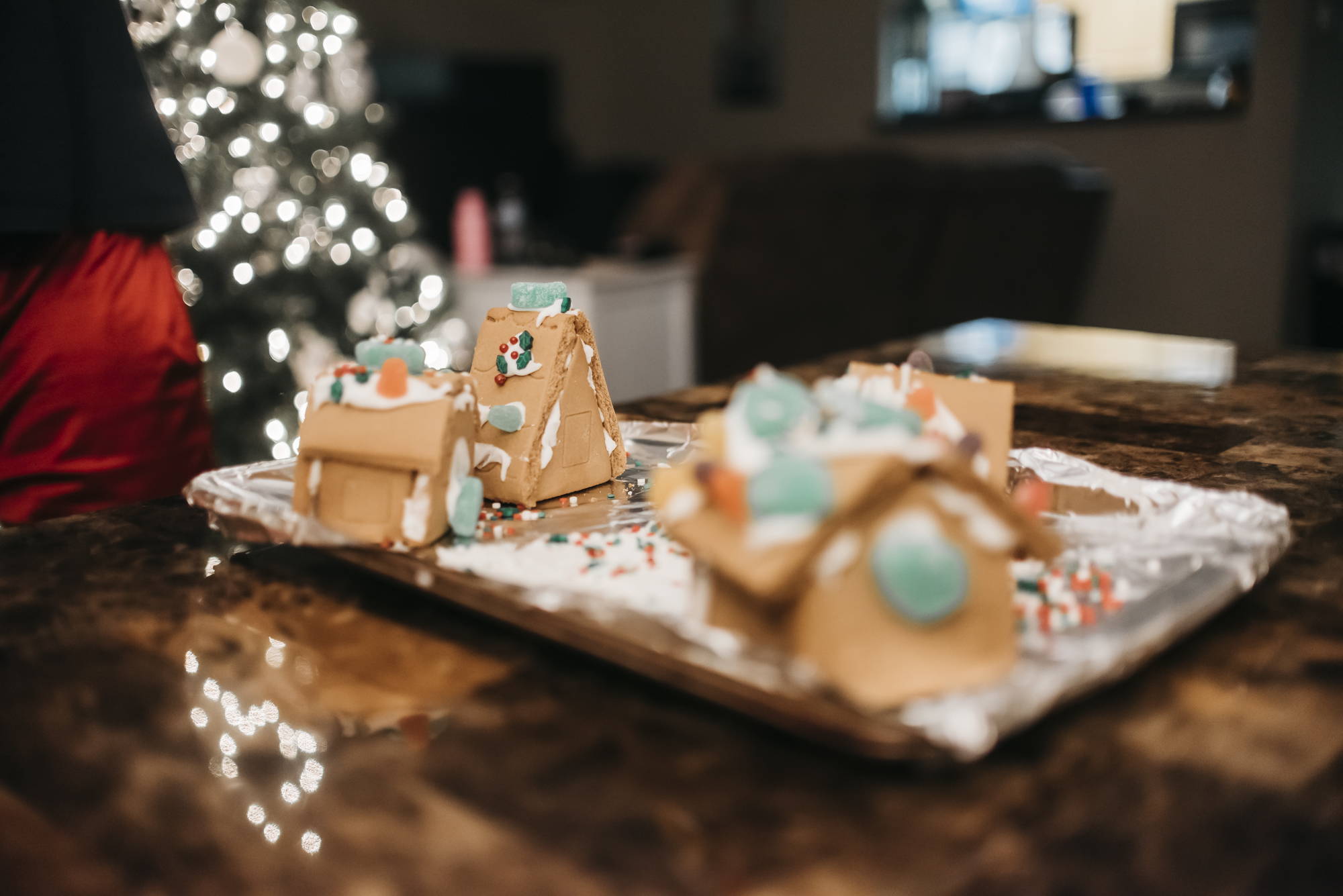 samanthawhitford.com gingerbread village christmas 2018 (20).jpg