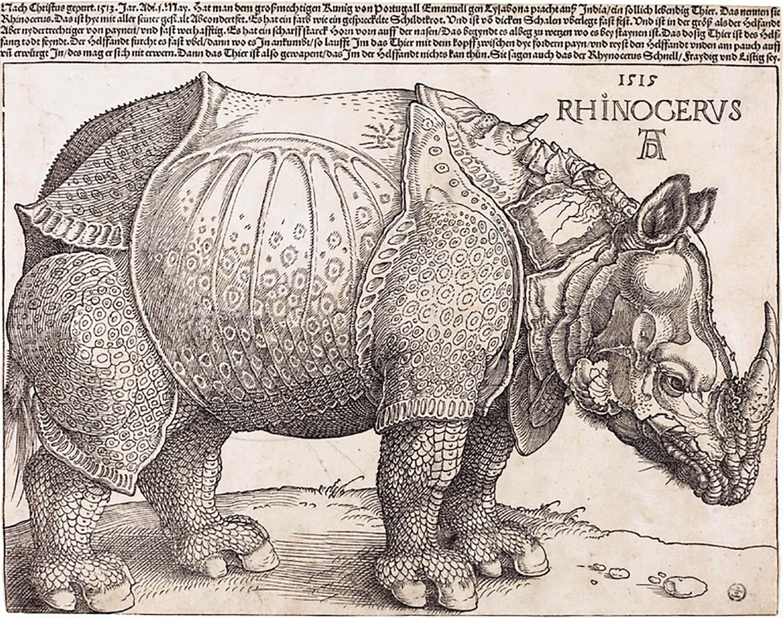 """Rhinoceros"" by Eugène Ionesco"