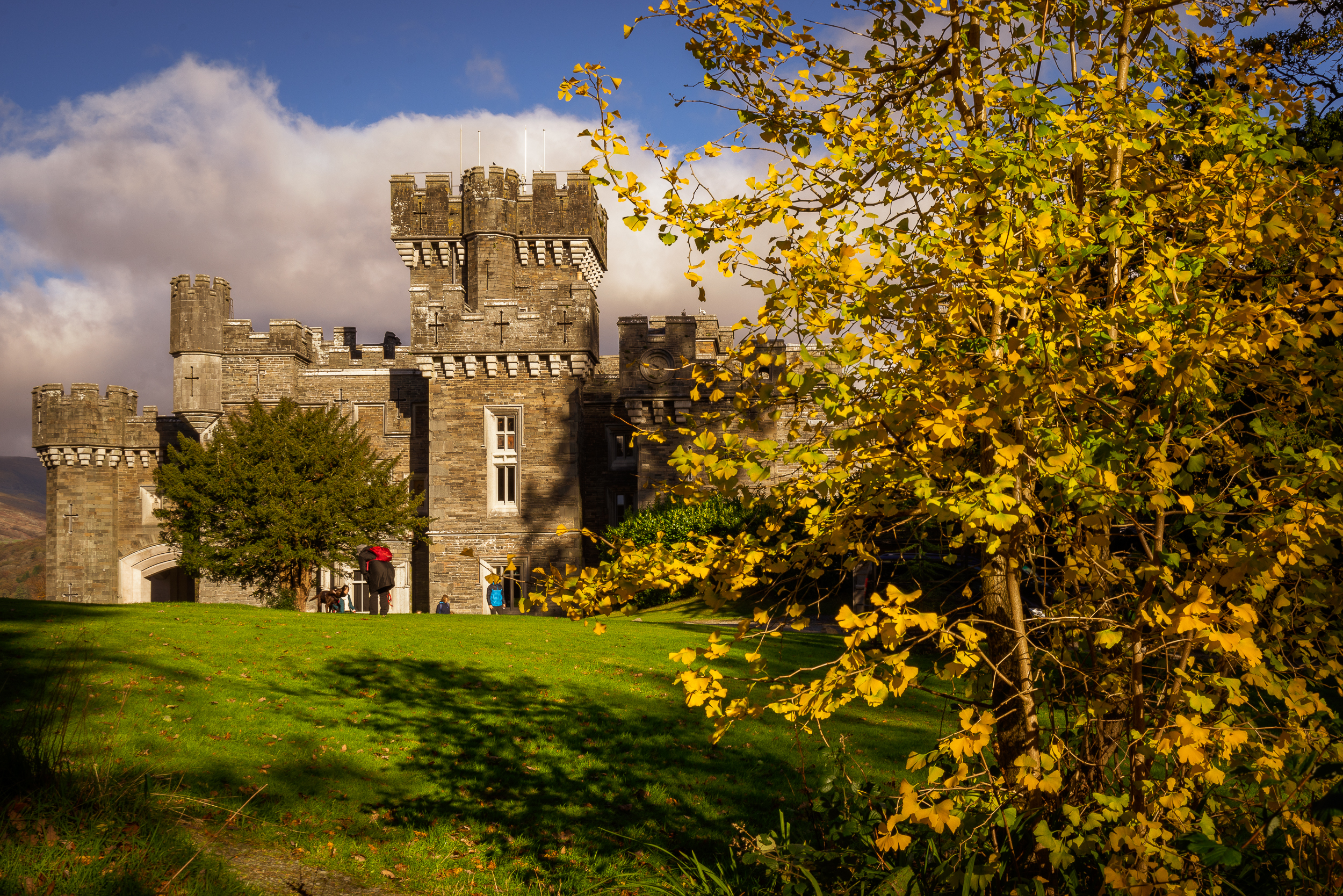 wray castle bush (1 of 1).jpg