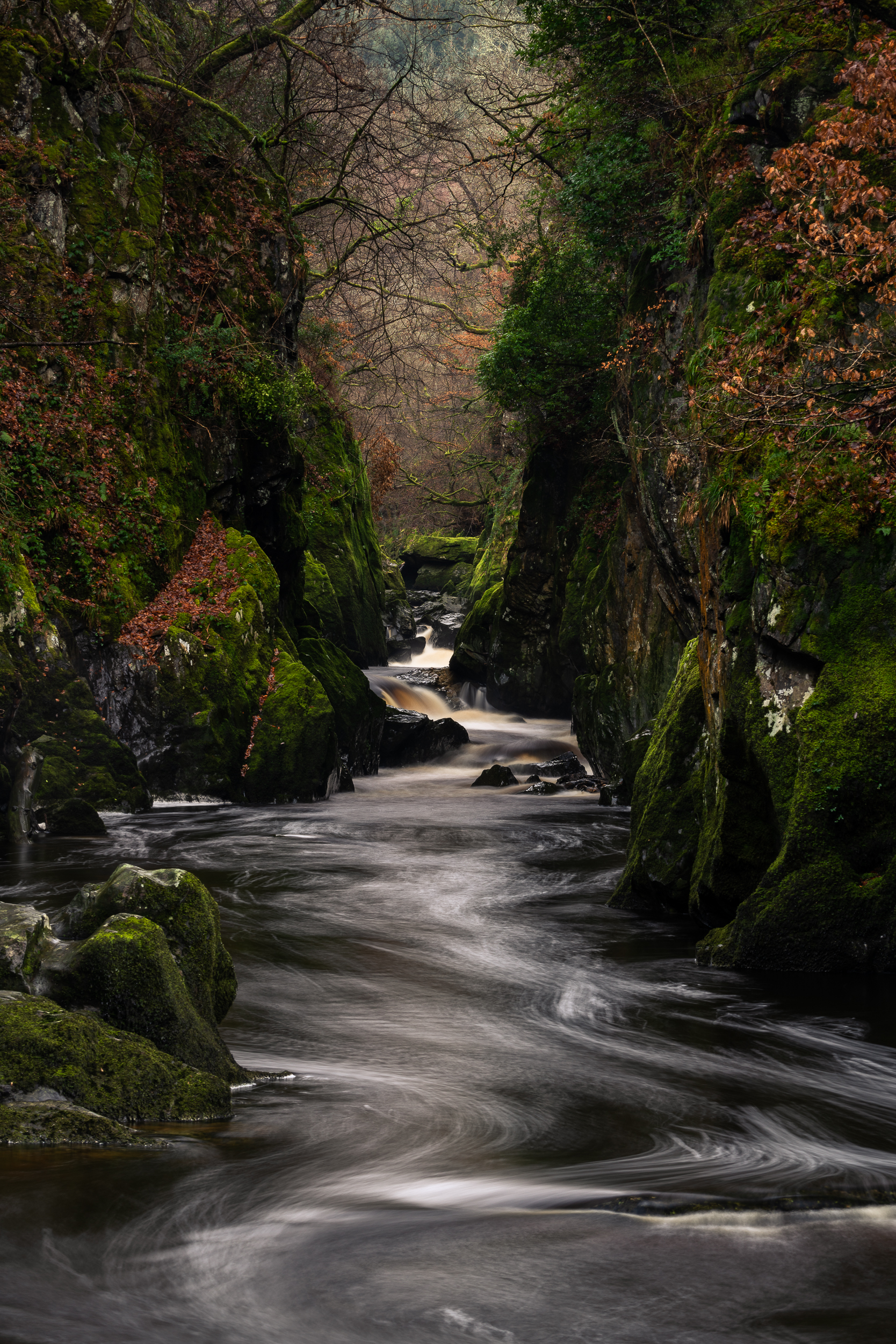 fairy glen winter (1 of 1).jpg